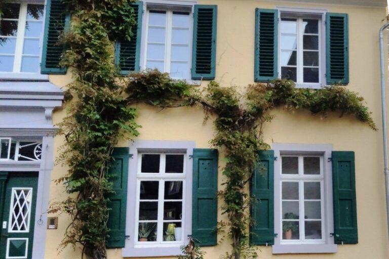 Der Deutschen Skepsis – aber bitte nicht bei den Immobilien