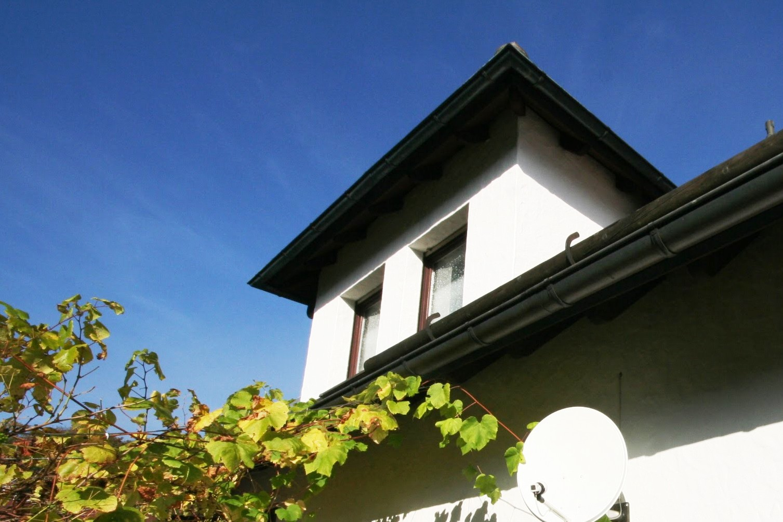 Immobilienweise prognostizieren gutes Jahr – Trotz politischer Störsignale