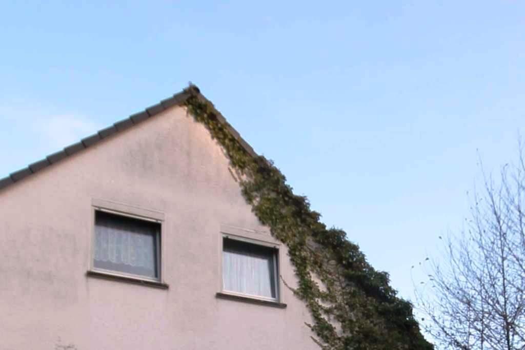 Immobilienbewertung Lohne