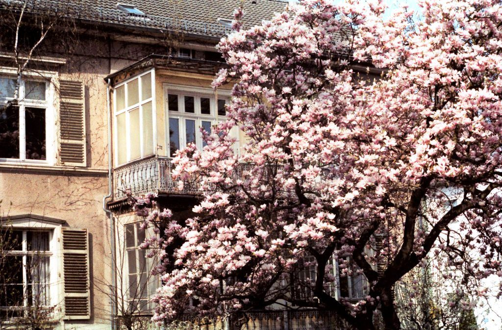 Immobilienbewertung Bad Frankenhausen