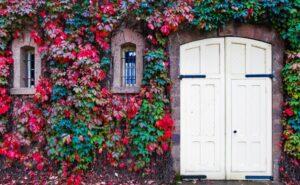 Immobiliengutachter Coswig (Anhalt)