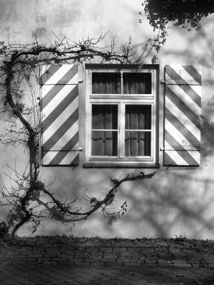 Limburgerhof
