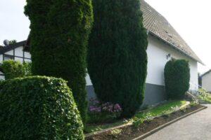 Immobilienbewertung im Landkreis Neustadt a.d.Waldnaab