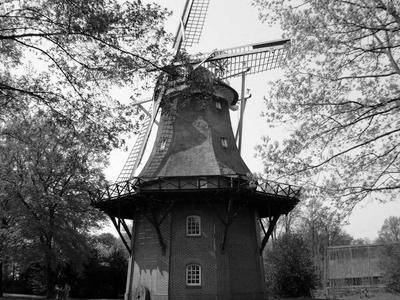 Landkreis Ammerland
