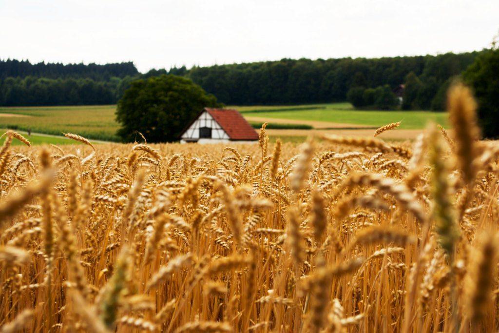 Immobilienbewertung im Landkreis Nordwestmecklenburg