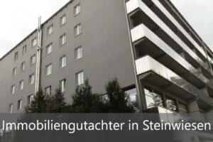 Immobiliengutachter Steinwiesen