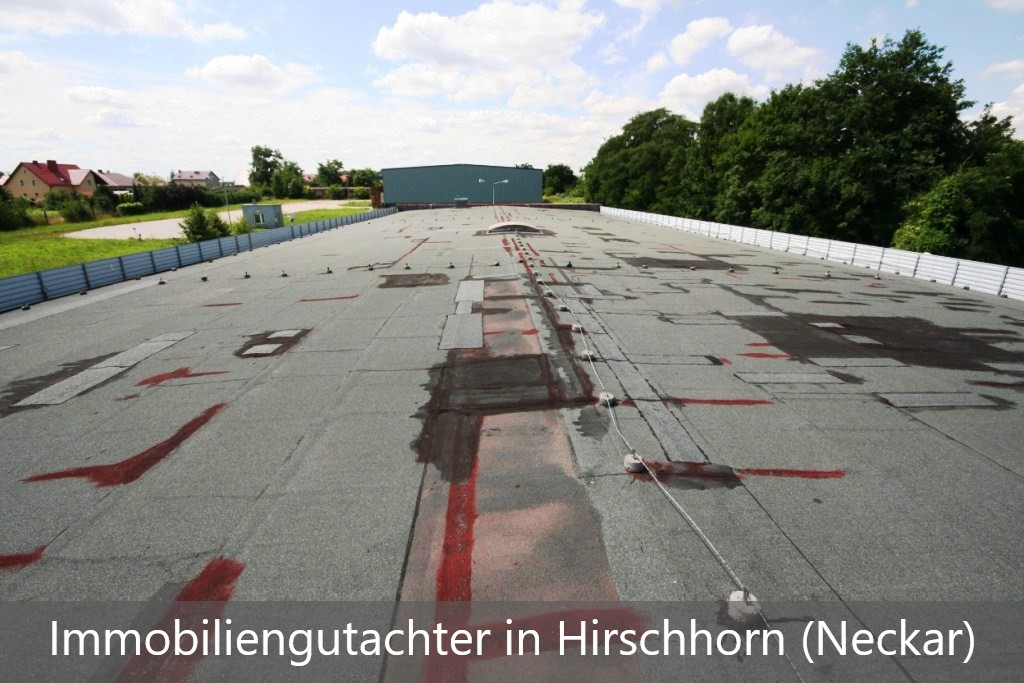 Immobiliengutachter Hirschhorn (Neckar)
