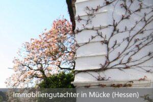 Immobiliengutachter Mücke (Hessen)